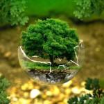 Vetro: cresce produzione e sostenibilità