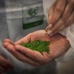 Firmato 'Decreto End-of-Waste' per la gomma riciclata dai Pneumatici Fuori Uso