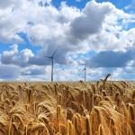 Green Deal 2030: solo il 45% delle imprese agricole ha avviato un percorso di investimenti