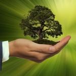 Capgemini: 79% dei consumatori modifica preferenze di acquisto in base a criteri di sostenibilità