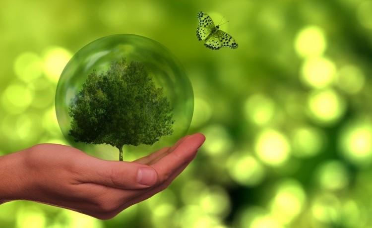 Falck Renewables e Illumia insieme per la transizione energetica