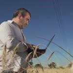 Dal campo al panificio: il 5G di Vodafone al servizio dell'agricoltura intelligente