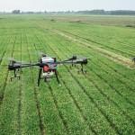 Linkem e Maccarese: partnership tecnologica per la transizione verso l'agricoltura 4.0