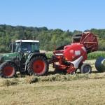 Lavoro, Coldiretti: balzo del 17,5% in agricoltura